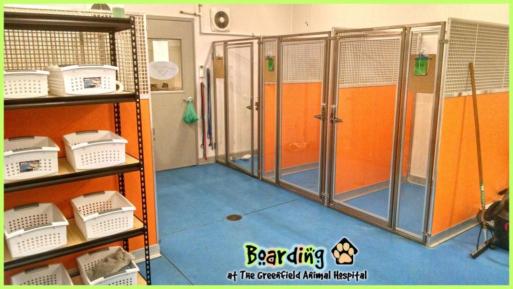 boarding - kennels w bins w logo